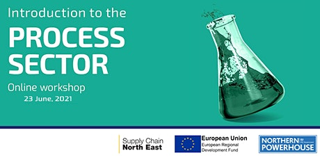 An Introduction to the Process Sector with NEPIC- June 2021 tickets