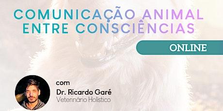 Curso Online Comunicação Animal entre Consciências - 27 e 28/02 ingressos