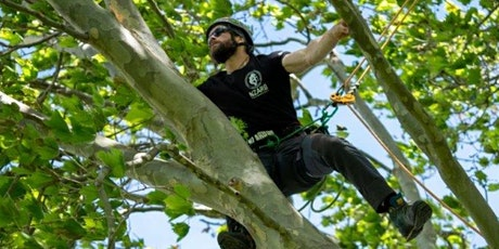Myrtle rust and kauri dieback workshop for arborists tickets