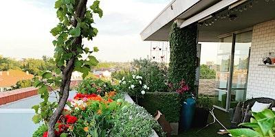 Balcony biodiversity