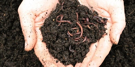 Children's Worm Farm Workshop tickets