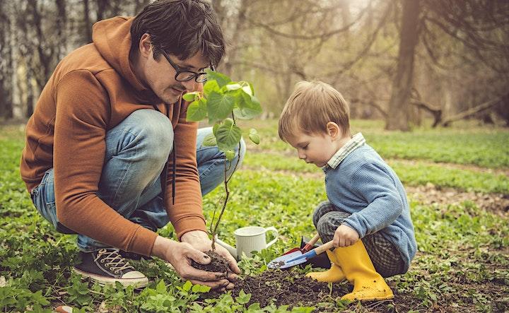 Children's Worm Farm Workshop image