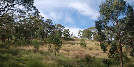 Macedon Ranges Field Nats Mount Gisborne bushwalk tickets