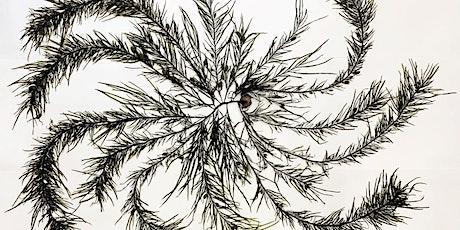 Kids' Art Adventures - Seaweed Arboretum tickets