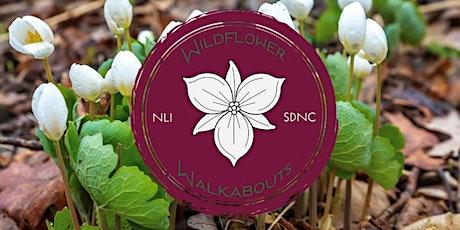 2021 Wildflower Walkabout - Cedar Cliff Forest Preserve tickets