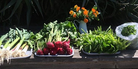 Online workshop! Grow Your Own Food in April tickets