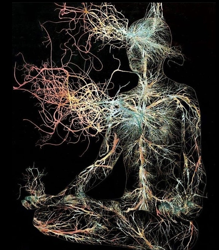 Introduction to Reducing Emotional Triggers via Trauma Informed Breathwork. image