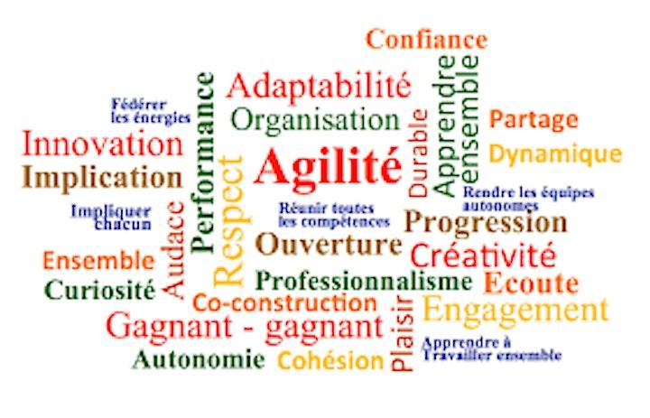 Image pour Agile Scrum : Gestion de projet Agile