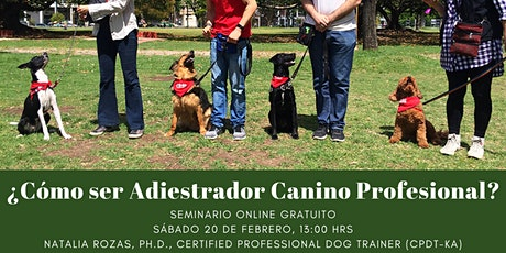 ¿Cómo ser Adiestrador Canino Profesional? - Webinar Gratuito en Vivo entradas