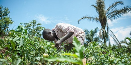 Monitoring and Evaluation for Agriculture and Rural Development Course tickets