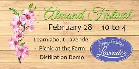 Almond Festival Open House tickets