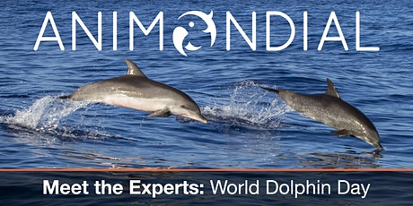 Meet the Experts - World Dolphin Day tickets