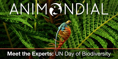Meet the Experts - United Nations Day of Biodiversity tickets