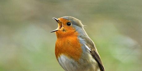 Rockin' Robin tickets