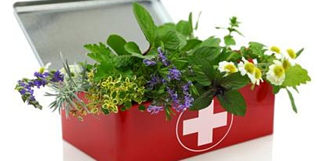 Foundations of Herbalism: First Aid, Sports Medicine, & Acute Conditions tickets