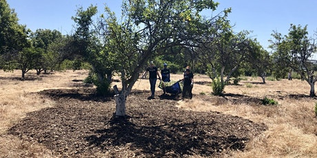 COVID FRIENDLY Historic Orchard Workday at Guadalupe River Park tickets