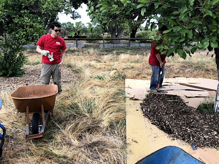 COVID FRIENDLY Historic Orchard Workday at Guadalupe River Park image