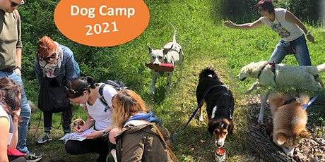 Dogcamp in Rauris 11.7. - 17.7.21 Tickets