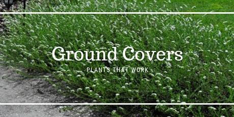 WEBINAR- Ground Covers - Plants That Work tickets