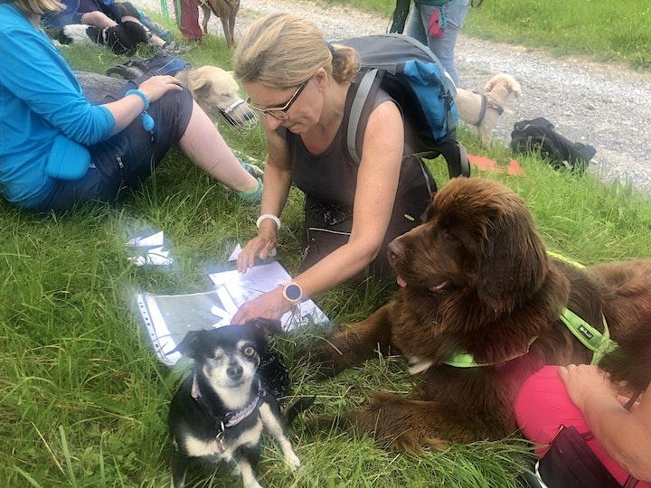 Dogcamp in Rauris 30.7. - 6.8.22: Bild