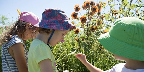 FARM KIDS SCHOOL HOLIDAYS - Native Bees Workshop tickets