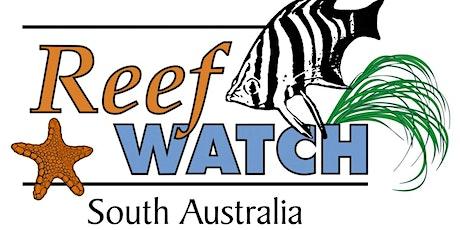 12 April - Intertidal Monitoring - Reef Watch SA tickets