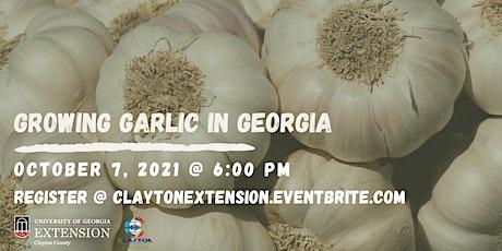 Growing Garlic In Georgia tickets