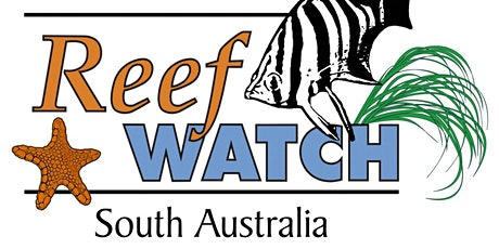 13 March - Intertidal Monitoring & Training - Reef Watch SA tickets