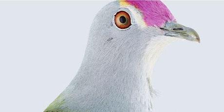 In Conversation Series: Birdland tickets