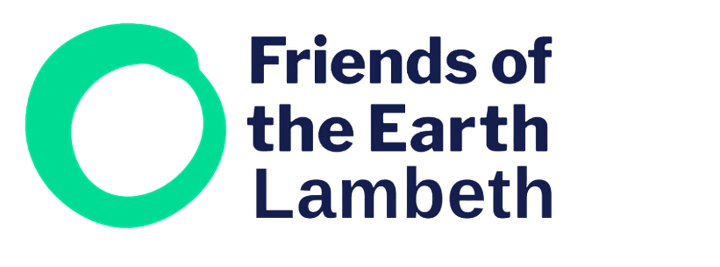 Lambeth Friends of the Earth July Welcome Meeting image