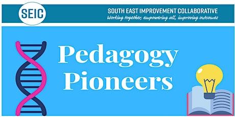 SEIC Pedagogy Pioneers Maths Interventions Webinar tickets