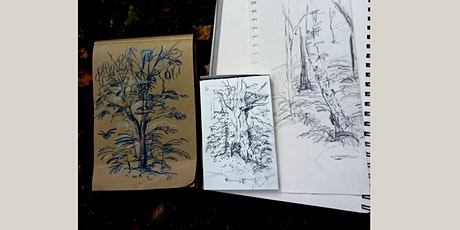 Woodland Sketching tickets