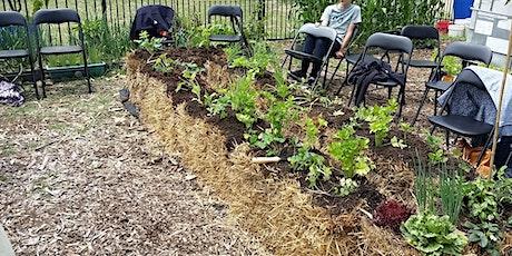 Straw Bale Gardening Workshop for Seniors tickets