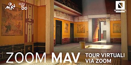 Eruzioni vesuviane | Un viaggio virtuale a Pompei e a Ercolano tickets
