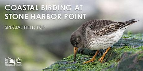 Coastal Birding at Stone Harbor Point February 2021 tickets