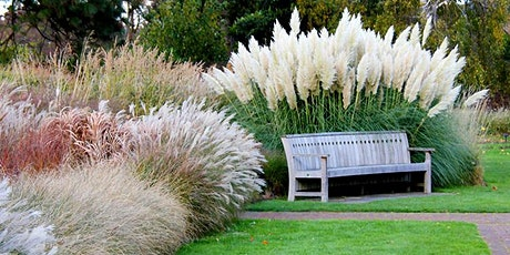 Ornamental grasses that take your garden to a new level, by Larry Hodgson tickets