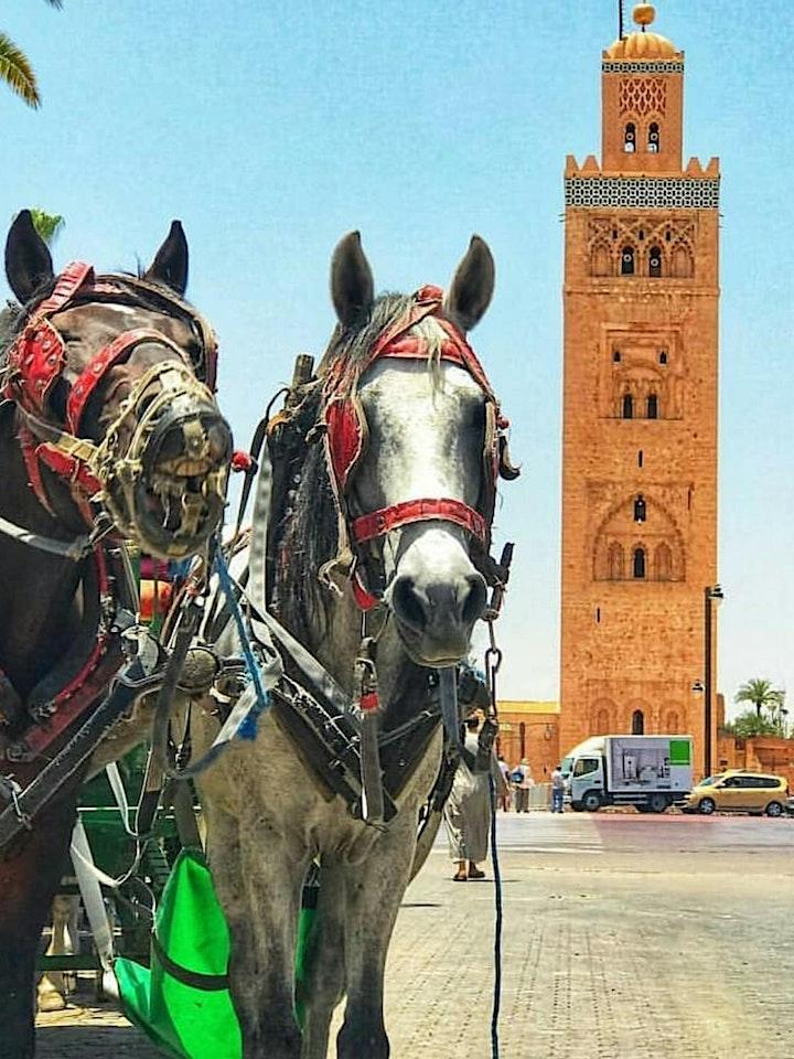 Marrakech Horse Carriage Ride - Virtual Live Tour image