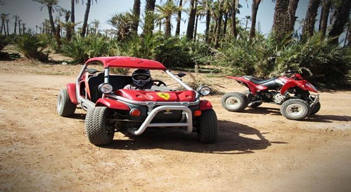 Marrakech Buggy Drive in the Palm Groves- 100 % Live Tour image