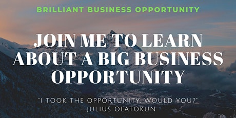 BRILLIANT BUSINESS OPPORTUNITY tickets