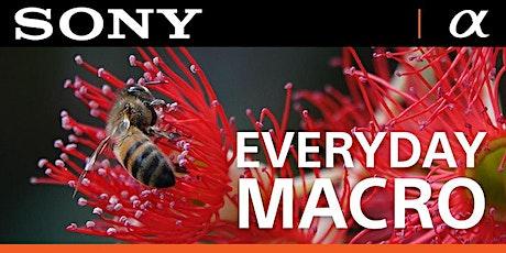 Everyday Macro with Sony tickets