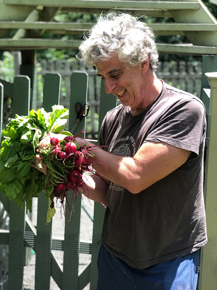 3 Class Spring Series- Creating your Organic Vegetable Garden image