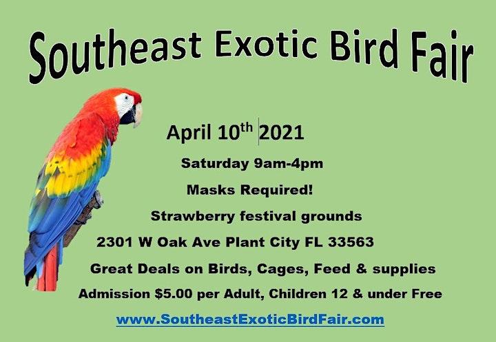 Southeast Exotic Bird Fair Plant City image