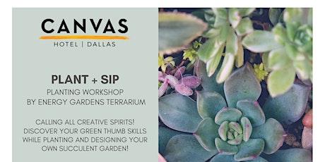 """CANVAS Dallas """"Plant & Sip"""" Workshop tickets"""