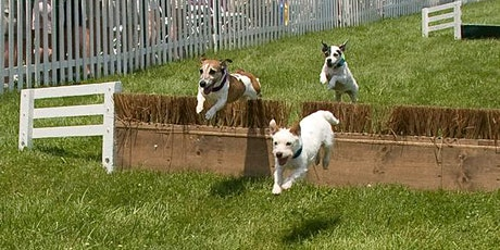 Lowcountry Hunt Fun Day Terrier Trials tickets