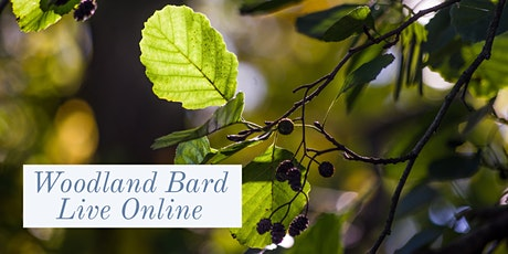 Woodland Bard Live - Alder Tree - Sunday March 7th @ 6pm tickets