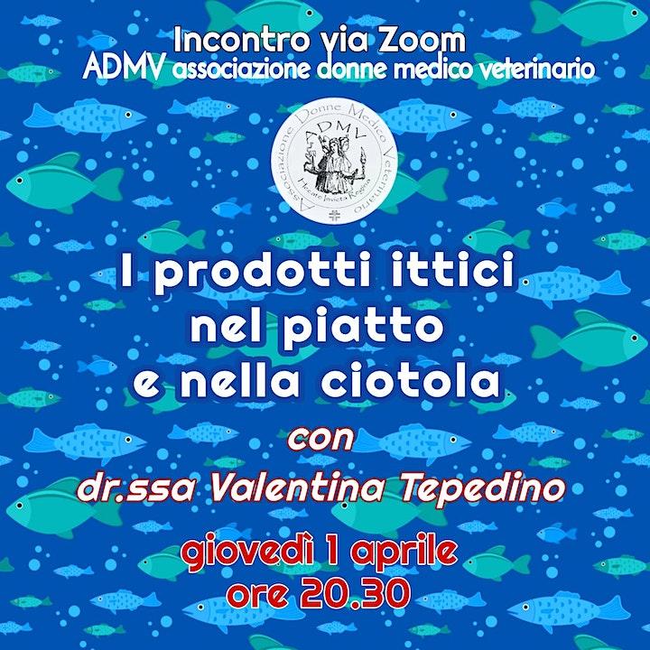 Immagine I prodotti ittici nel piatto e nella ciotola. Con Valentina Tepedino.