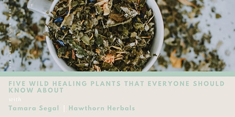 VIRTUAL WELLNESS WEEK - Five Healing Plants That Everyone Should Know About tickets
