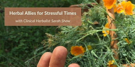 Herbal Allies for Stressful Times - BETHEL UNIVERSITY tickets