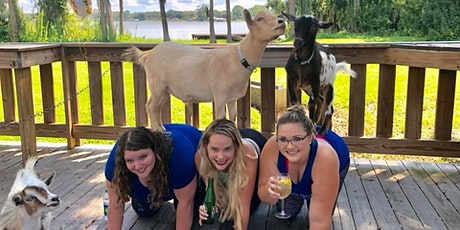 Goat Yoga Tampa plus free drink! In the Loop Brewing, Land O Lakes; 3/21/21 tickets