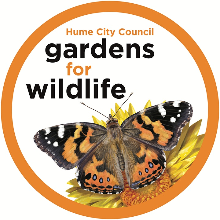 Hume City's Wildlife - iNaturalist Information Session image